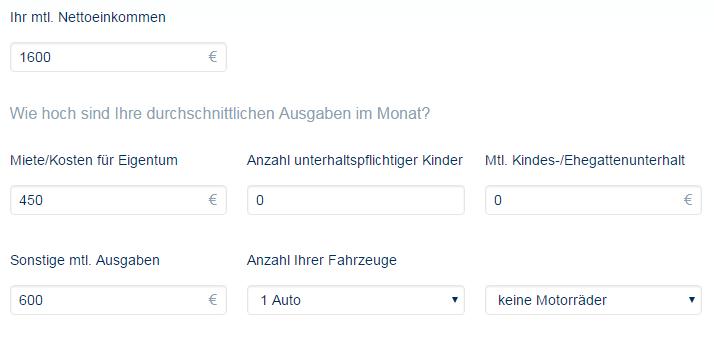 Screenshot: Fragen zu Einnahmen und Ausgaben